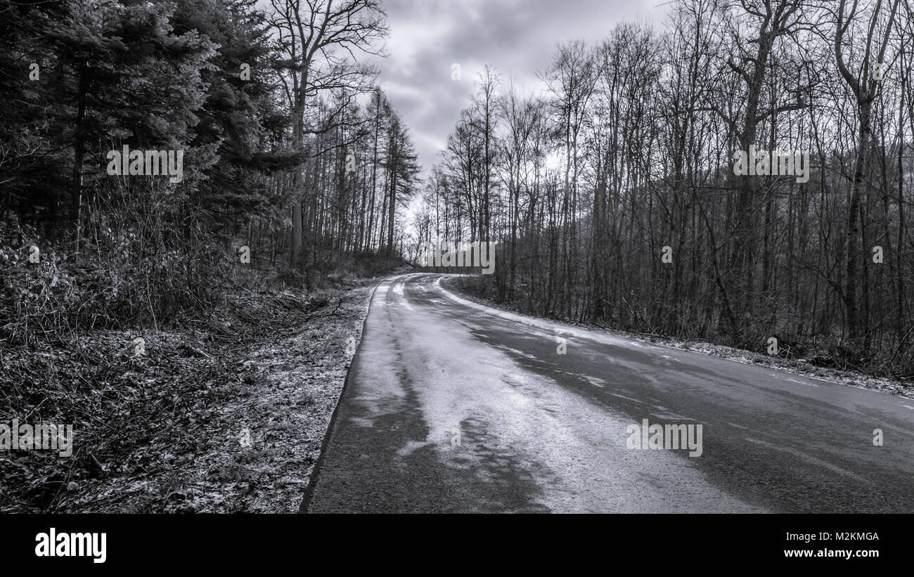 Frosty Wald, Deutschland Stockbild