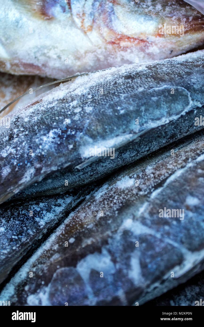 Fisch, der für den Verkauf in Dalston Markt, East London, England, Grossbritannien, Europa Stockbild