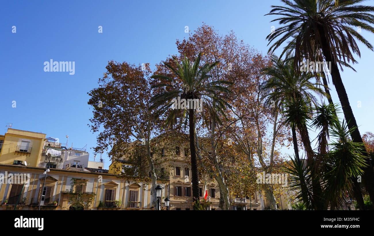 Palermo, Sizilien, Italien - Palmen im Park Villa Bonanno, Winter morgen Stockbild