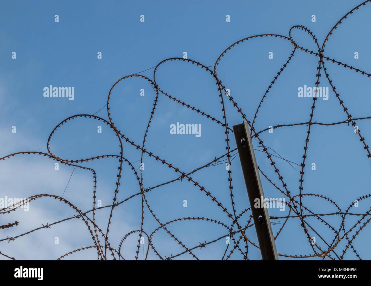 Stacheldraht zaun entlang der demilitarisierten Zone an der Grenze ...