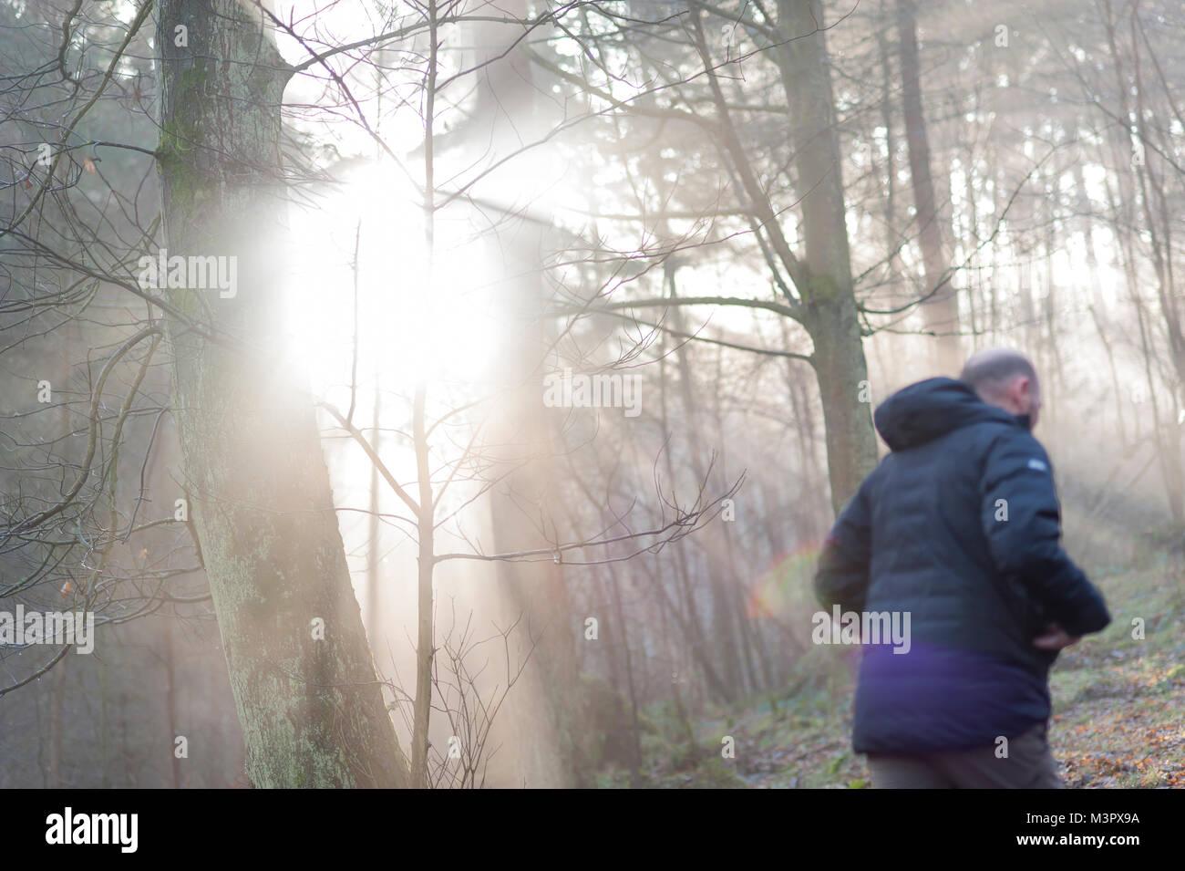 Ein Mann geht in den Wald, sobald ein Sonnenstrahl bricht durch die Bäume Stockfoto