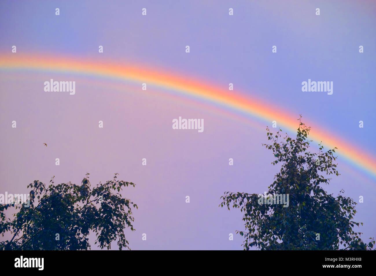 Regenbogen über blauen Himmel. Natürliches Phänomen Stockbild