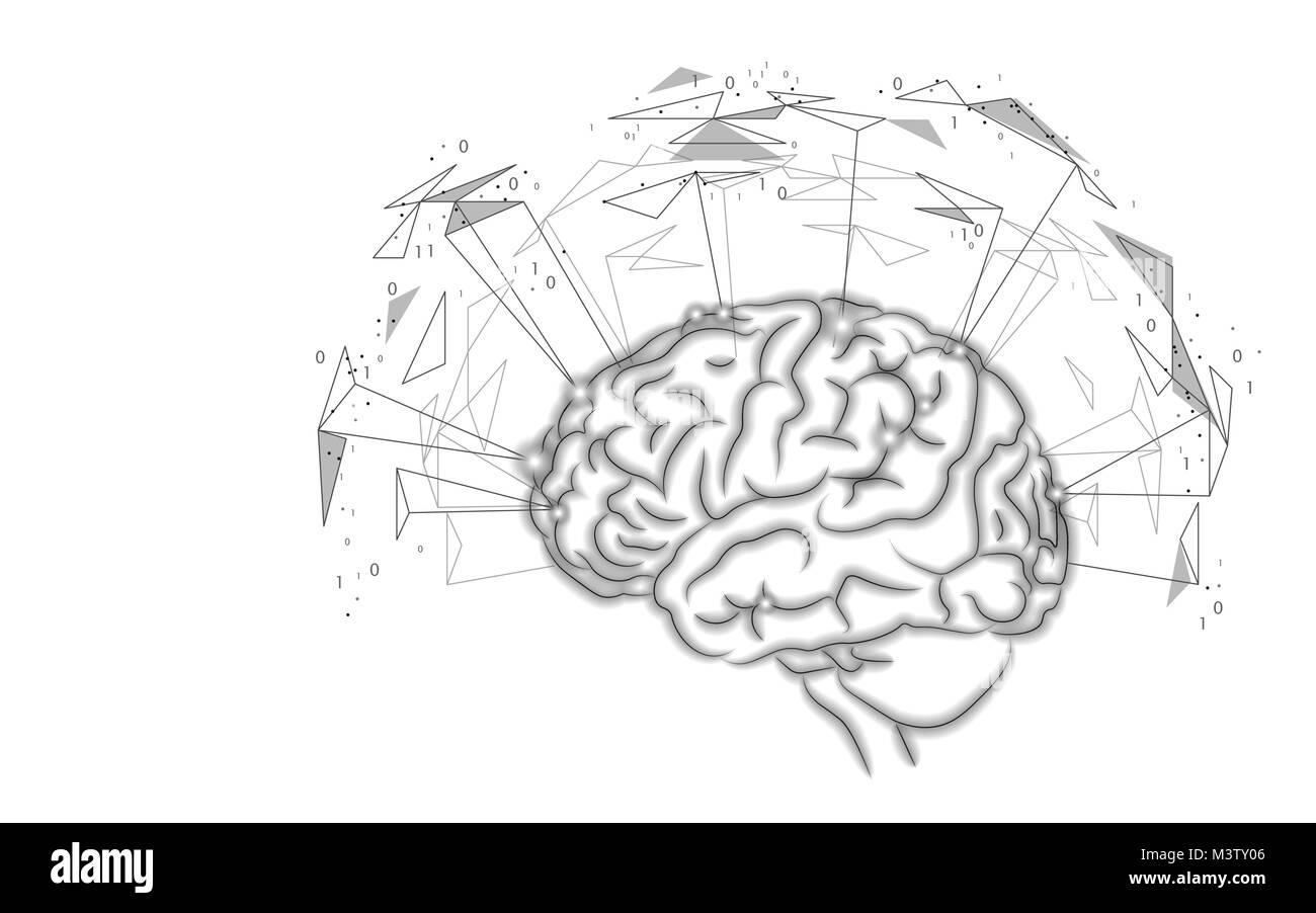 Niedlich Gehirn Anatomie Malbuch Zeitgenössisch - Druckbare ...