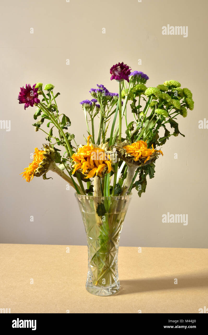 Dying Bouquet Stockfotos & Dying Bouquet Bilder - Alamy
