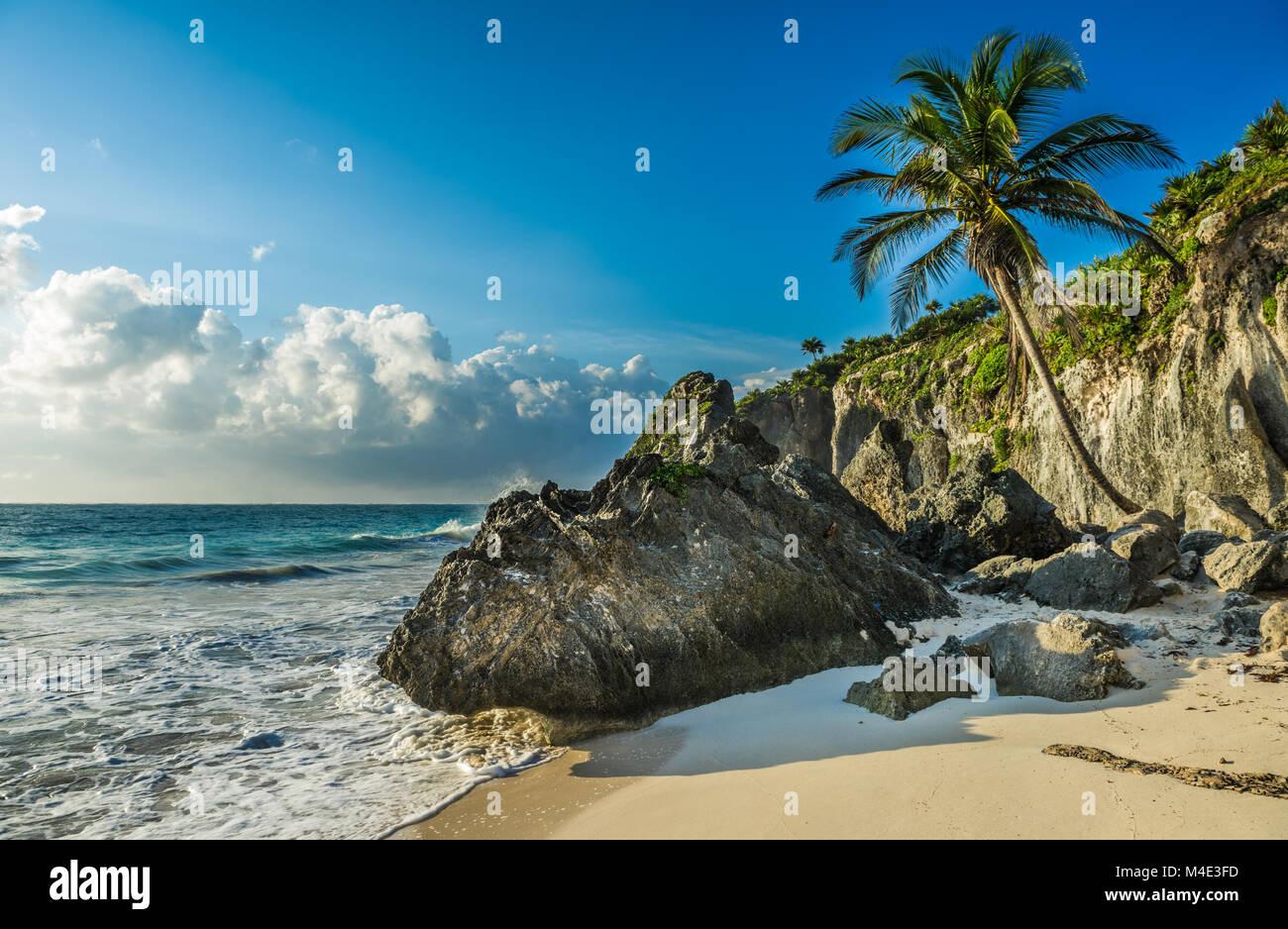 Karibik-Strand mit Kokospalmen, Tulum, Mexiko Stockbild