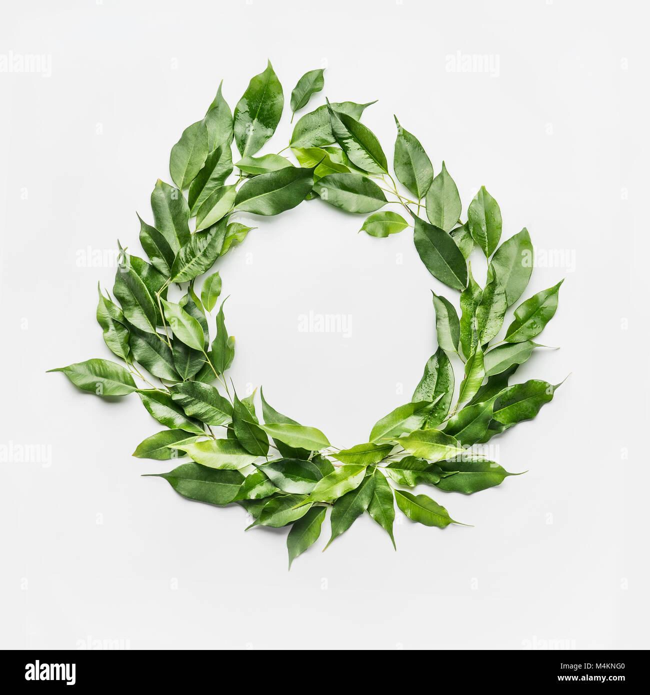 Runder Kreis Rahmen aus grünen Zweige und Blätter auf weißem ...