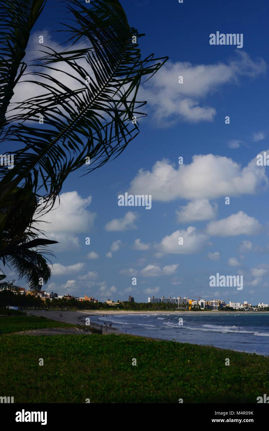 Kite Surfen, Brasilien Stockbild