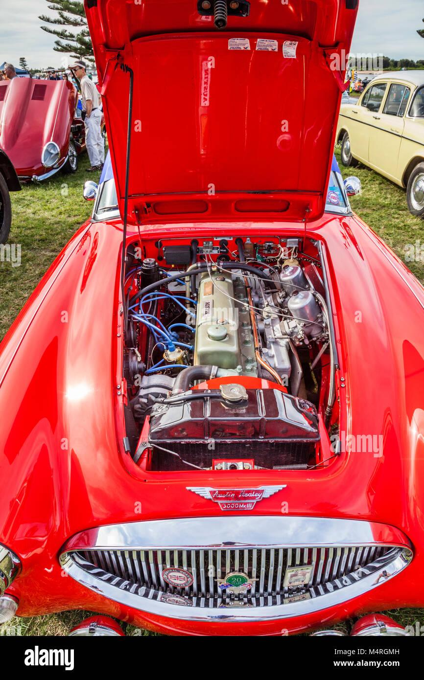 Australien, New South Wales, Central Coast, der Eingang, Blick auf den BMC Motor eines Austin Healey 3000 MkIII, Stockbild