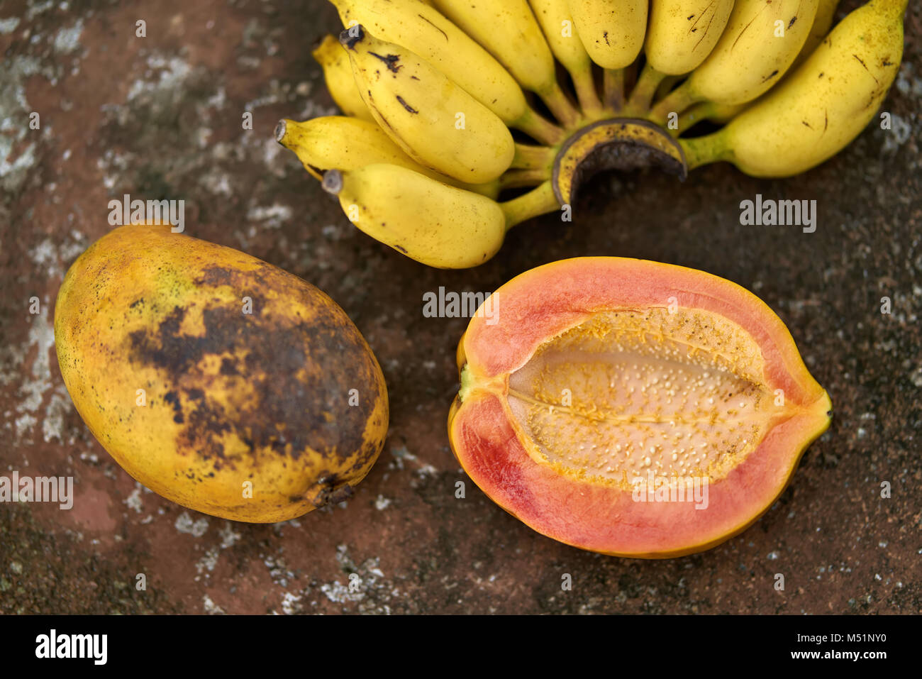 Bunte Papaya und Bananen Stockbild
