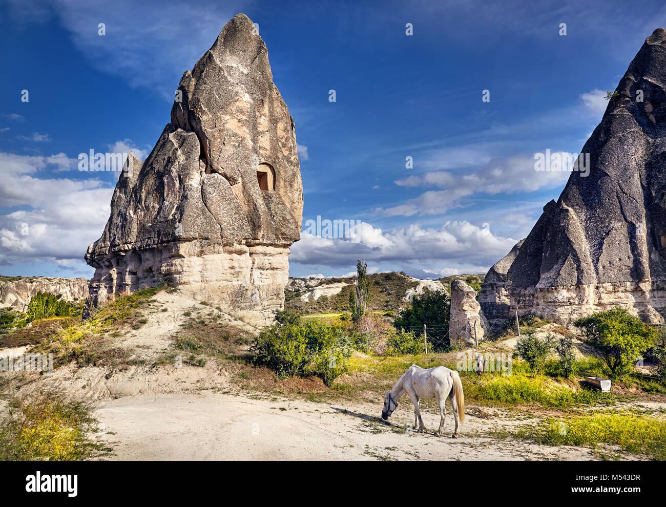 White Horse in der Nähe von Tuffstein geologische Formation mit Windows namens Feenkamine in Kappadokien, Türkei Stockbild