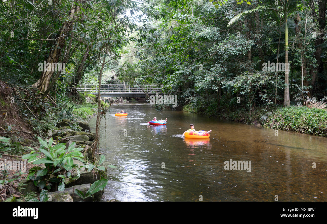 Kinder Creek driften auf aufblasbare Bojen, Goomboora Park, Brinsmead, Cairns, Far North Queensland, FNQ, QLD, Australien Stockbild