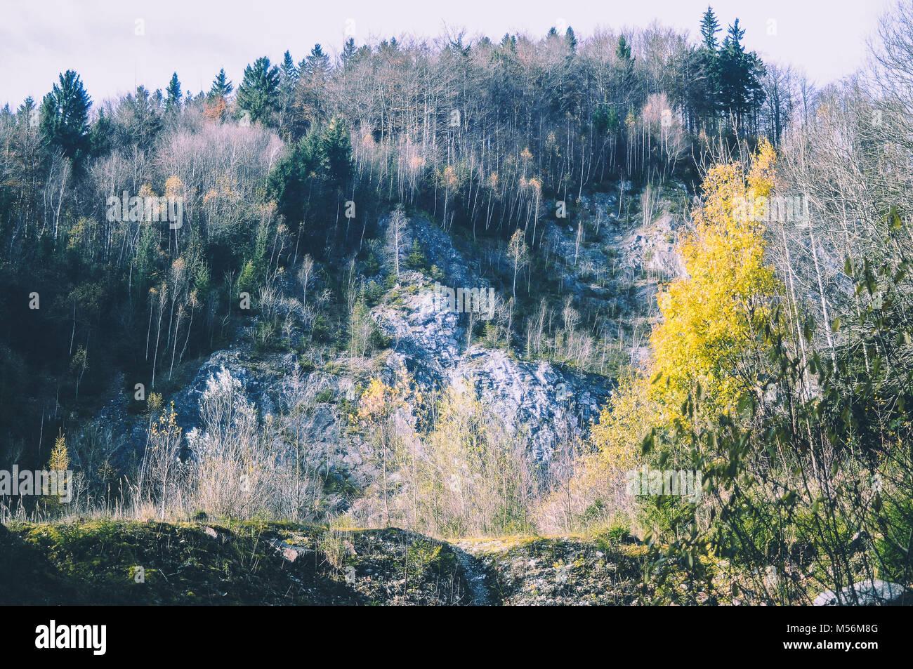 Ansicht von unten nach oben in die Berge. Geschwungene Linien und bunten Bäume im Herbst II Stockbild