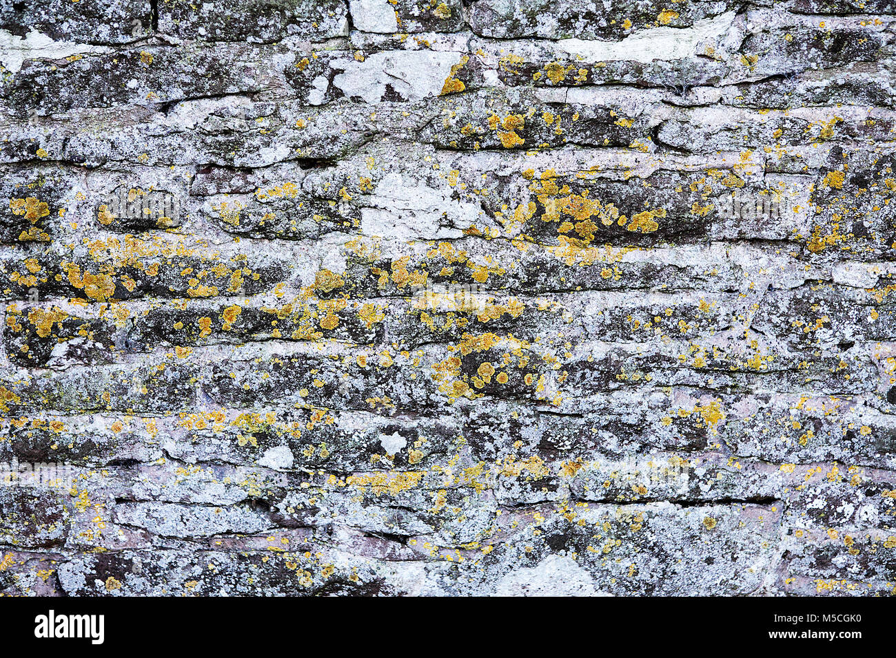 grey sandstone texture stockfotos grey sandstone texture bilder alamy. Black Bedroom Furniture Sets. Home Design Ideas