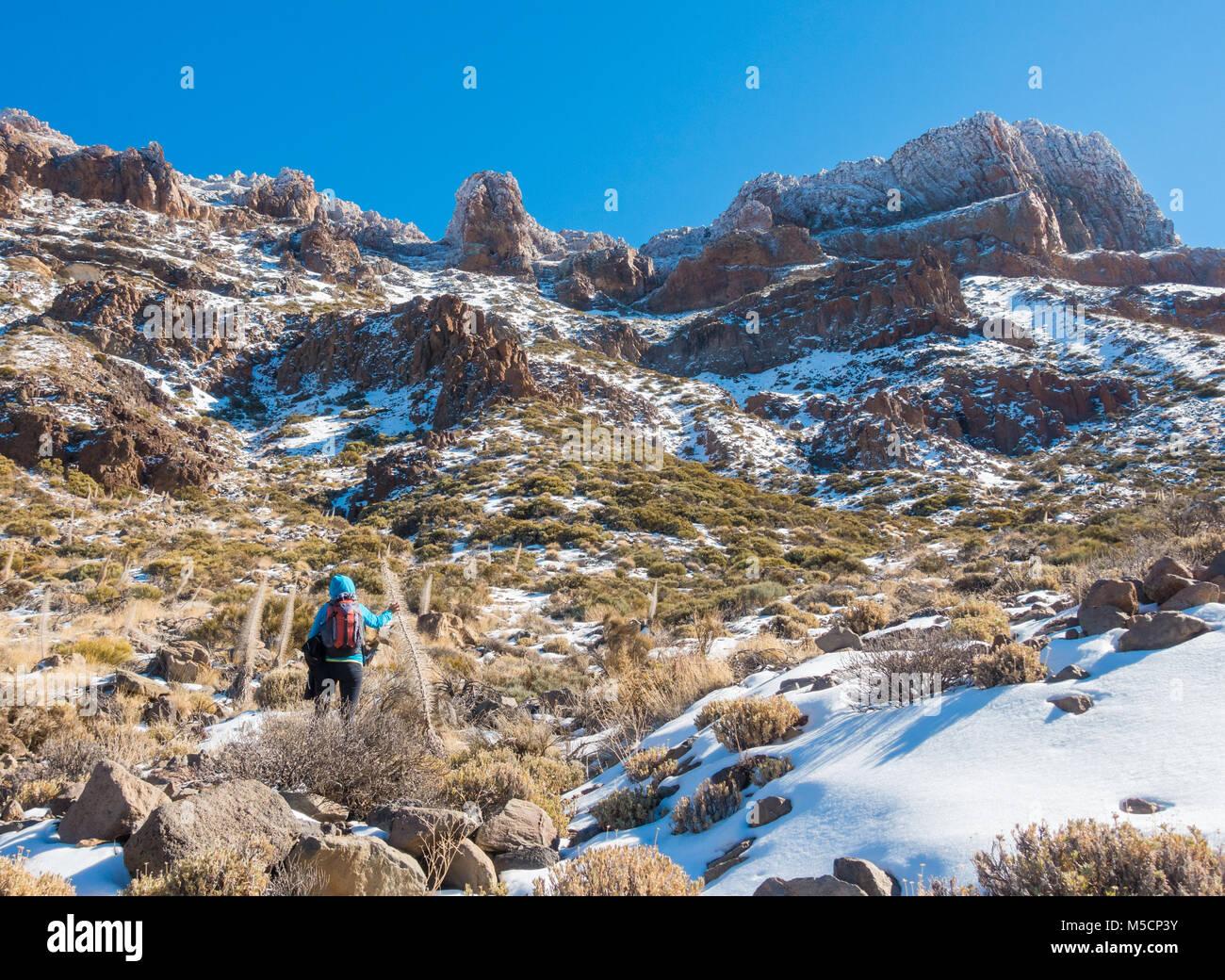 Weibliche Wanderer auf Wanderweg in Krater unter den Teide nach den letzten Schnee. Parque Nacional del Teide, Teneriffa, Stockbild