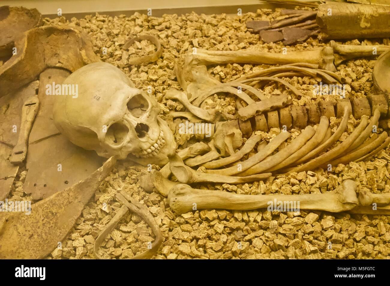 Mongolische Krieger AD 1000 Museum Stockbild
