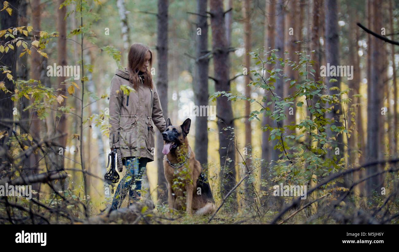 Junges attraktives Mädchen und ihr Haustier - Deutscher Schäferhund - zu Fuß auf einem Herbst Wald Stockbild