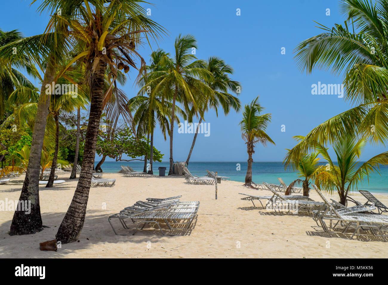 Weißen Strand mit Sonnenliegen, viele Palmen, blauer Himmel und türkisfarbenen Meer im Meer der Karibik, Stockbild