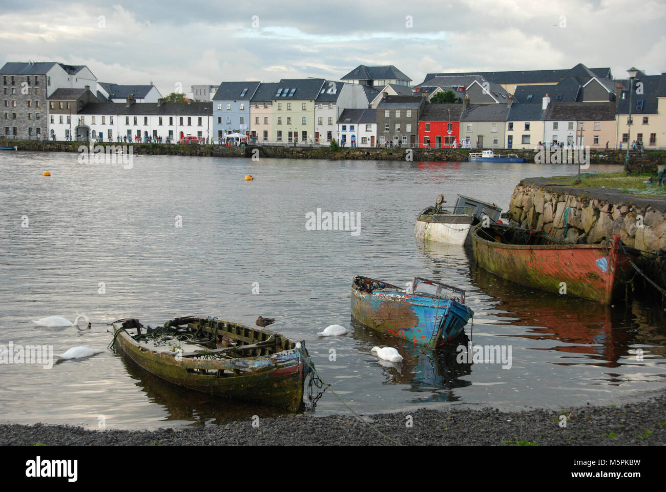 Paisaje en Galway, Irland Stockbild