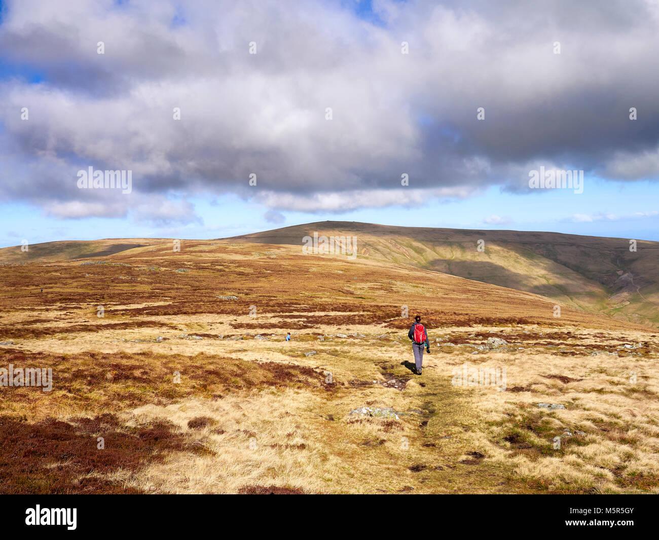 Ein Wanderer zu Fuß in Richtung Miton Hügel und hohe Hecht vom Gipfel des Carrock fiel im englischen Lake Stockbild