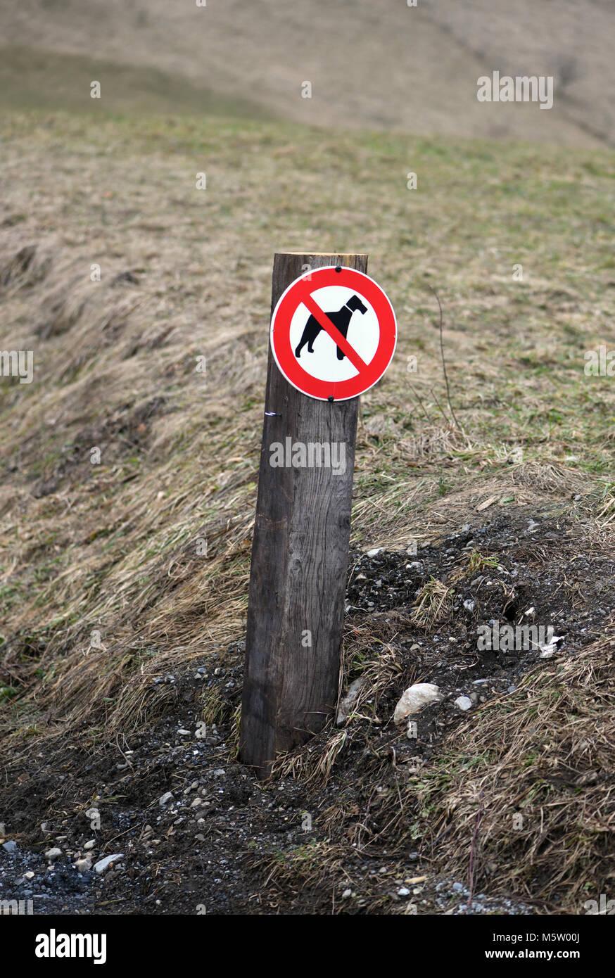 Ein Schild mit einem Piktogramm angezeigt keine Hunde neben einem Track. Samoens, Haute Savoie, Frankreich. Stockbild