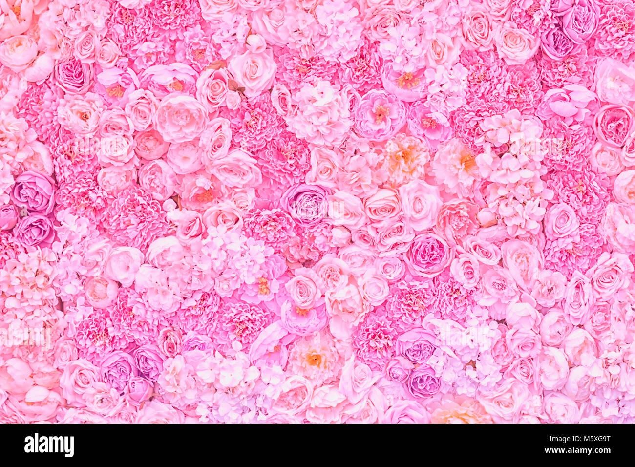 Blumen Rosa Pastell Hintergrund Hochzeit Dekoration Romantische