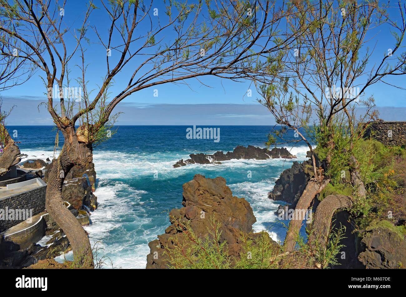 Madeiras Stockfotos & Madeiras Bilder - Alamy