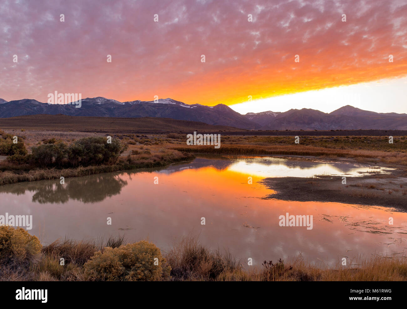 Sonnenuntergang, Feuchtgebiete, Mono Basin National Forest Scenic Area, östlichen Sierra, Inyo National Forest, Stockbild