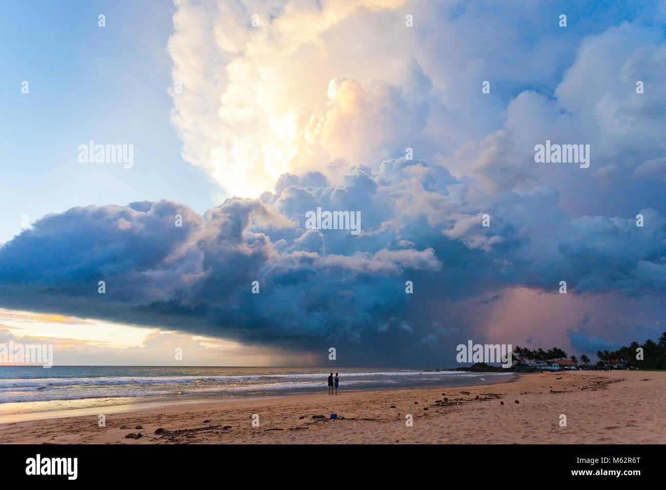 Induruwa Beach, Sri Lanka, Asien - herrliche Atompilz bei Sonnenuntergang am Strand von Induruwa Stockfoto