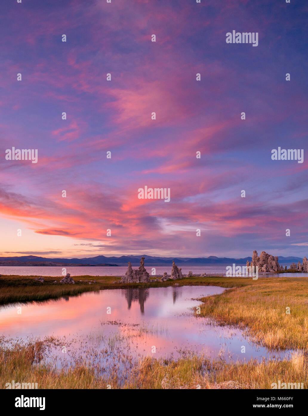 Sonnenuntergang, Feuchtgebiete, Tuffstein Formationen, Mono Lake, Mono Becken NF Scenic Area, Inyo NF, CA Stockbild