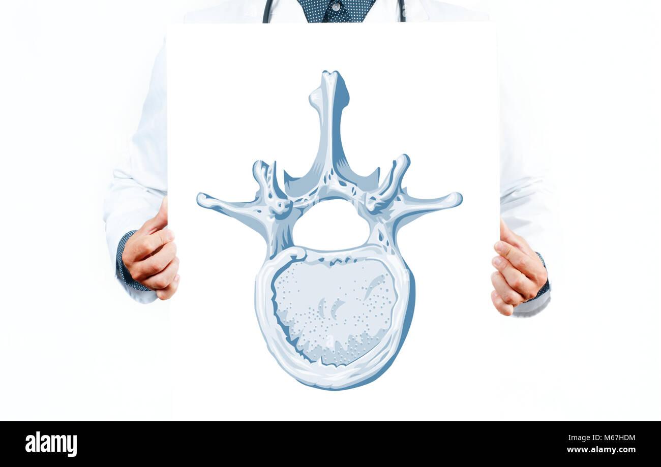 Medizin und Anatomie. Vektor Wirbel Diagramm zeigen Teile des ...