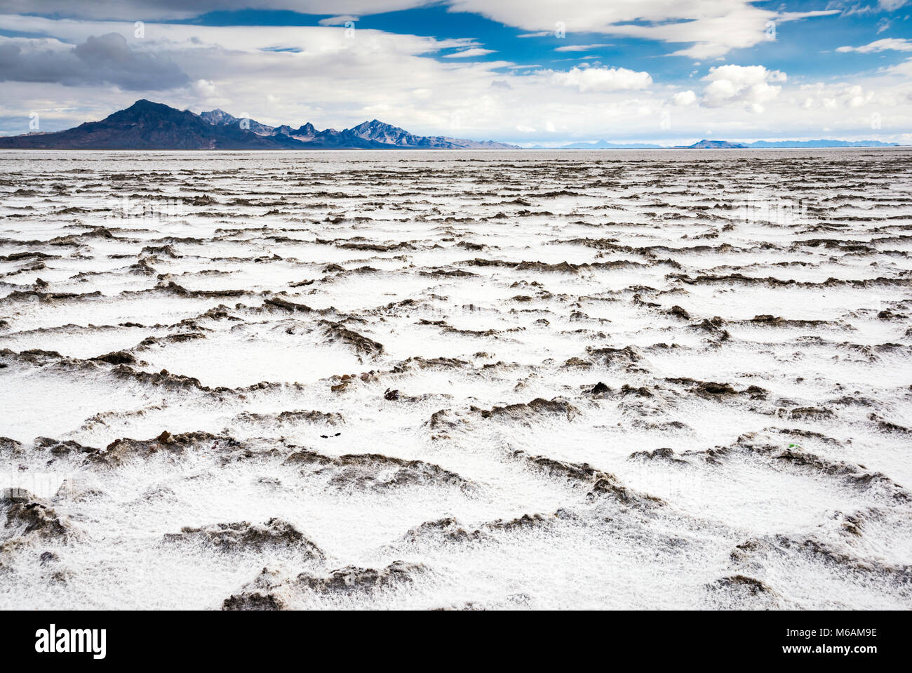 Salz Verkrustet Platten In Bonneville Salt Flats State Park