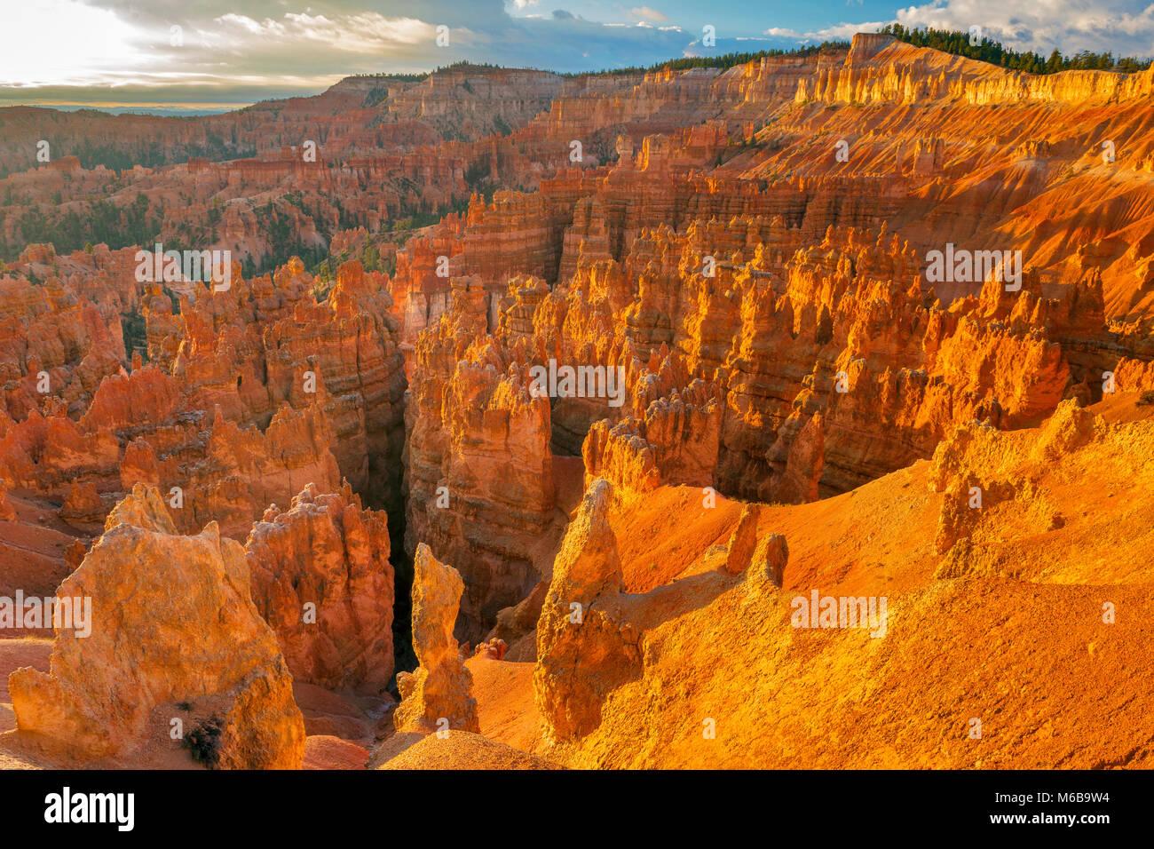 Sunrise, Hoodoos, die Wall Street, Bryce Canyon National Park, Utah Stockbild