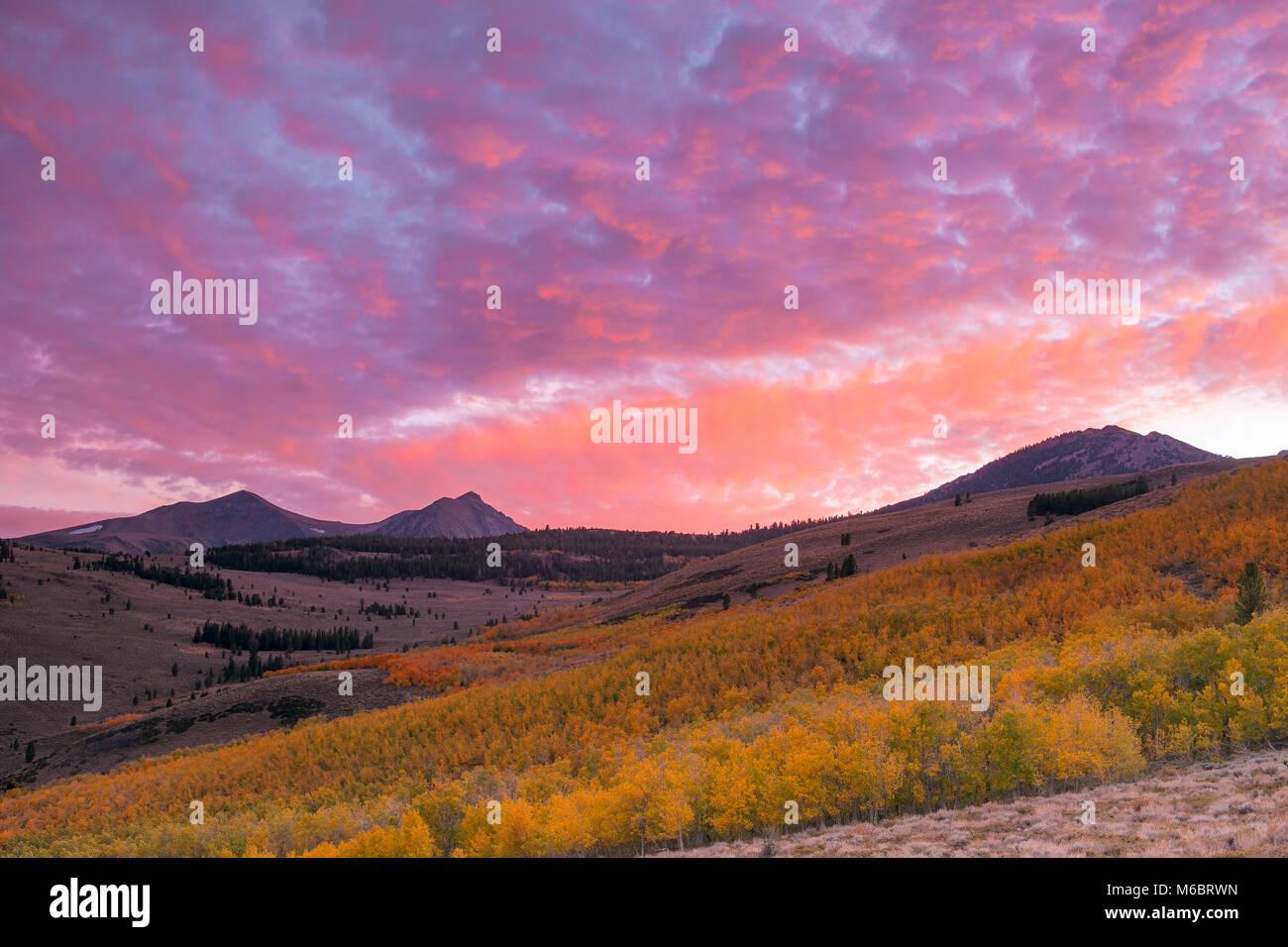 Sonnenuntergang, Aspen, Conway Gipfel, Mt. Warren, Gilcrest Peak, Inyo National Forest, östlichen Sierra, Kalifornien Stockbild