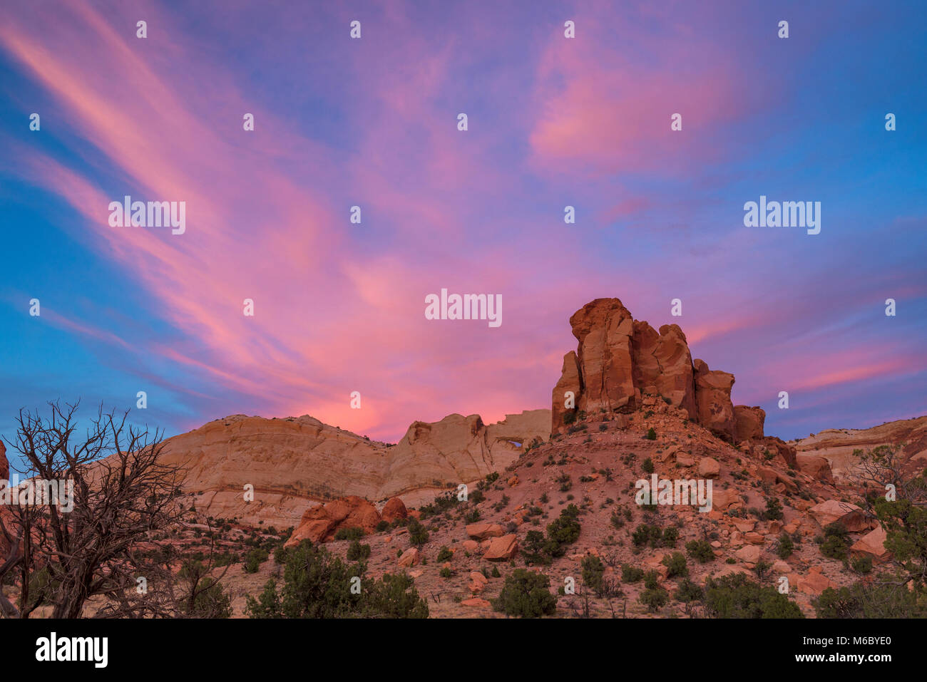 Sonnenuntergang, Muley Twist Canyon, Capitol Reef National Park, Utah Stockbild