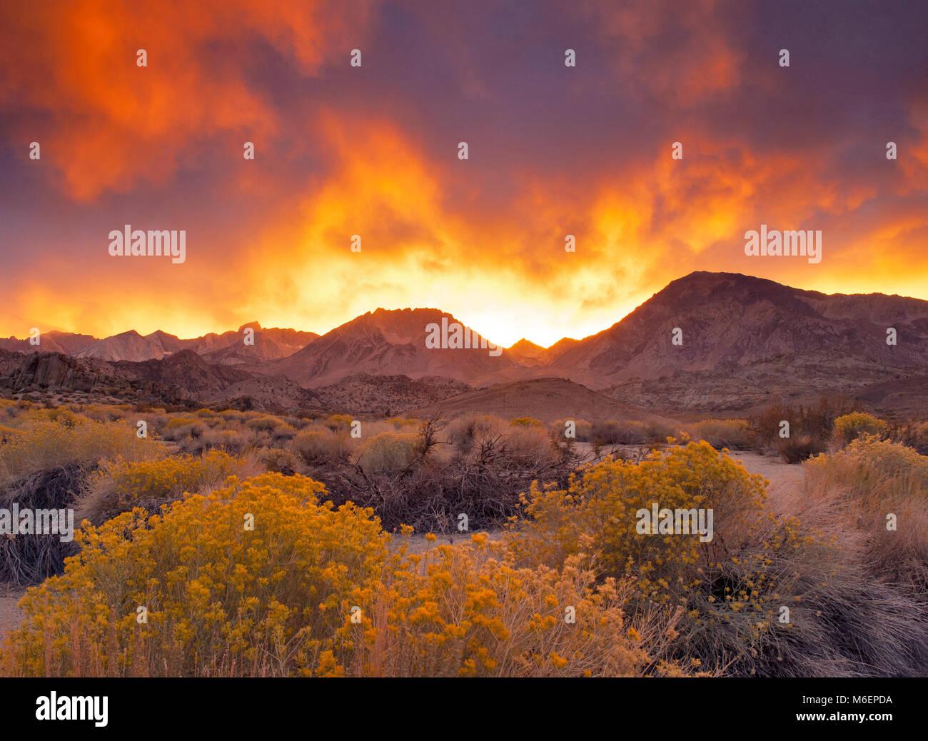 Sonnenuntergang, den Buttermilks, Bischof Creek National Recreation Area, Inyo National Forest, östlichen Sierra, Stockbild