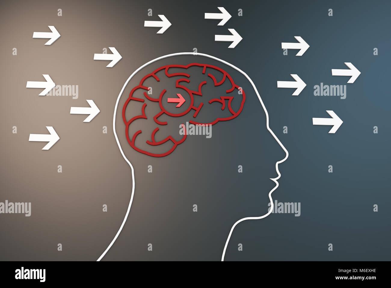 Menschliche Gehirn mit Pfeil, Art und Weise des Denkens Stockbild