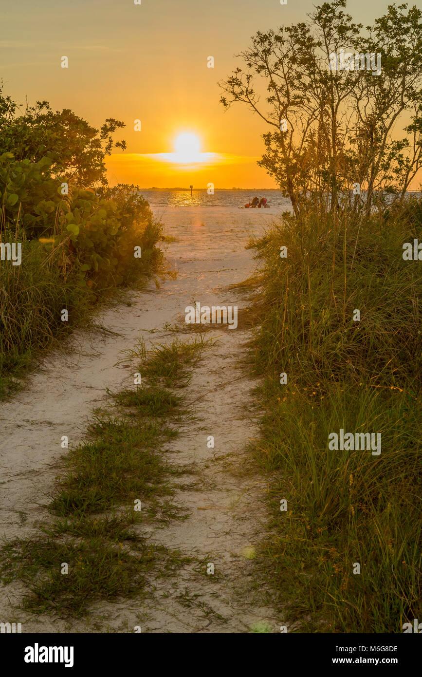 USA, Florida, Fort Myers Beach, Sol, Trimmklappen,, Semester, Ledigt, hav, solnedgång, njuta, beundra, människor, Stockbild