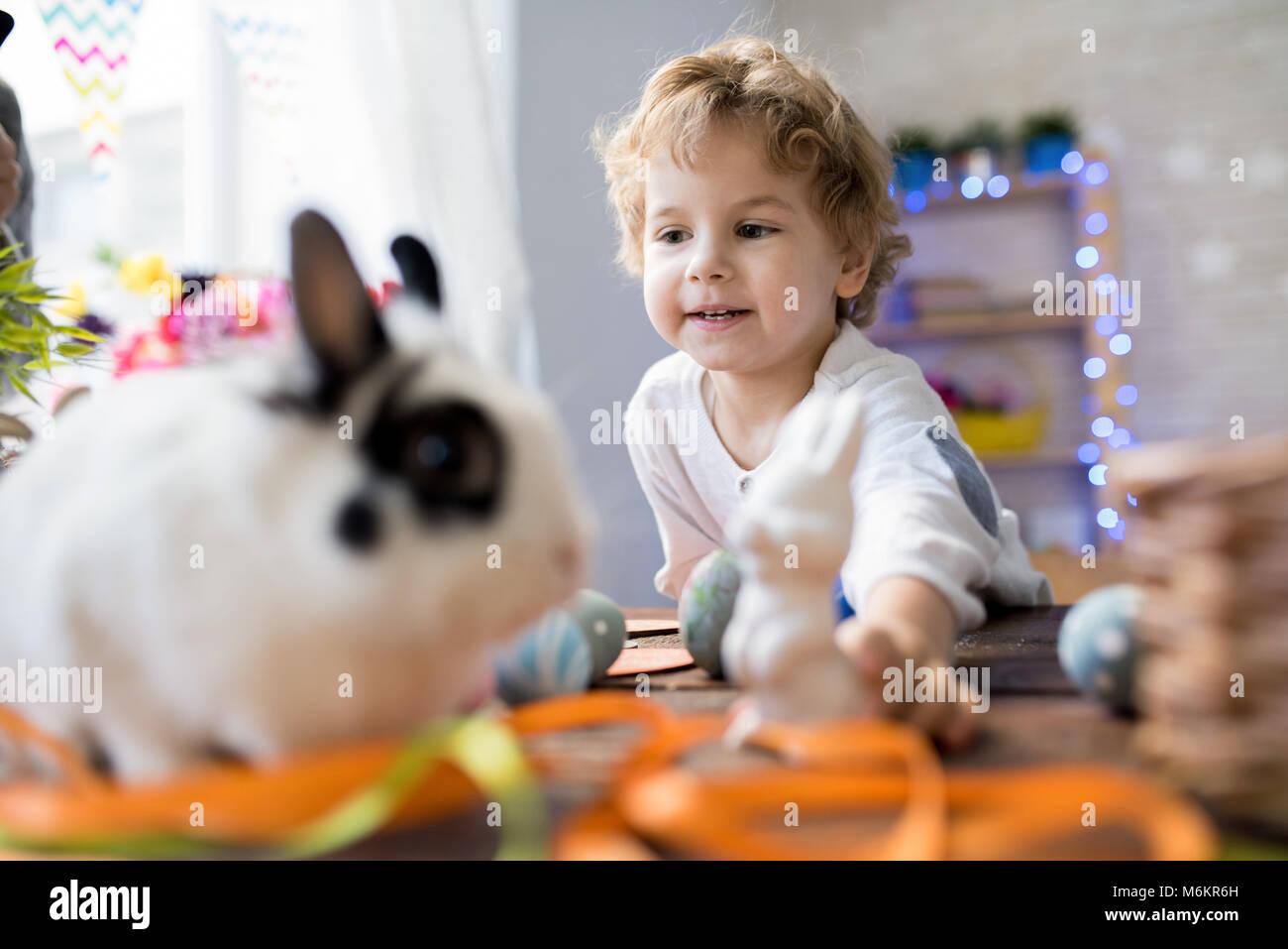 Kleiner Junge spielt mit Pet-Bunny Stockbild