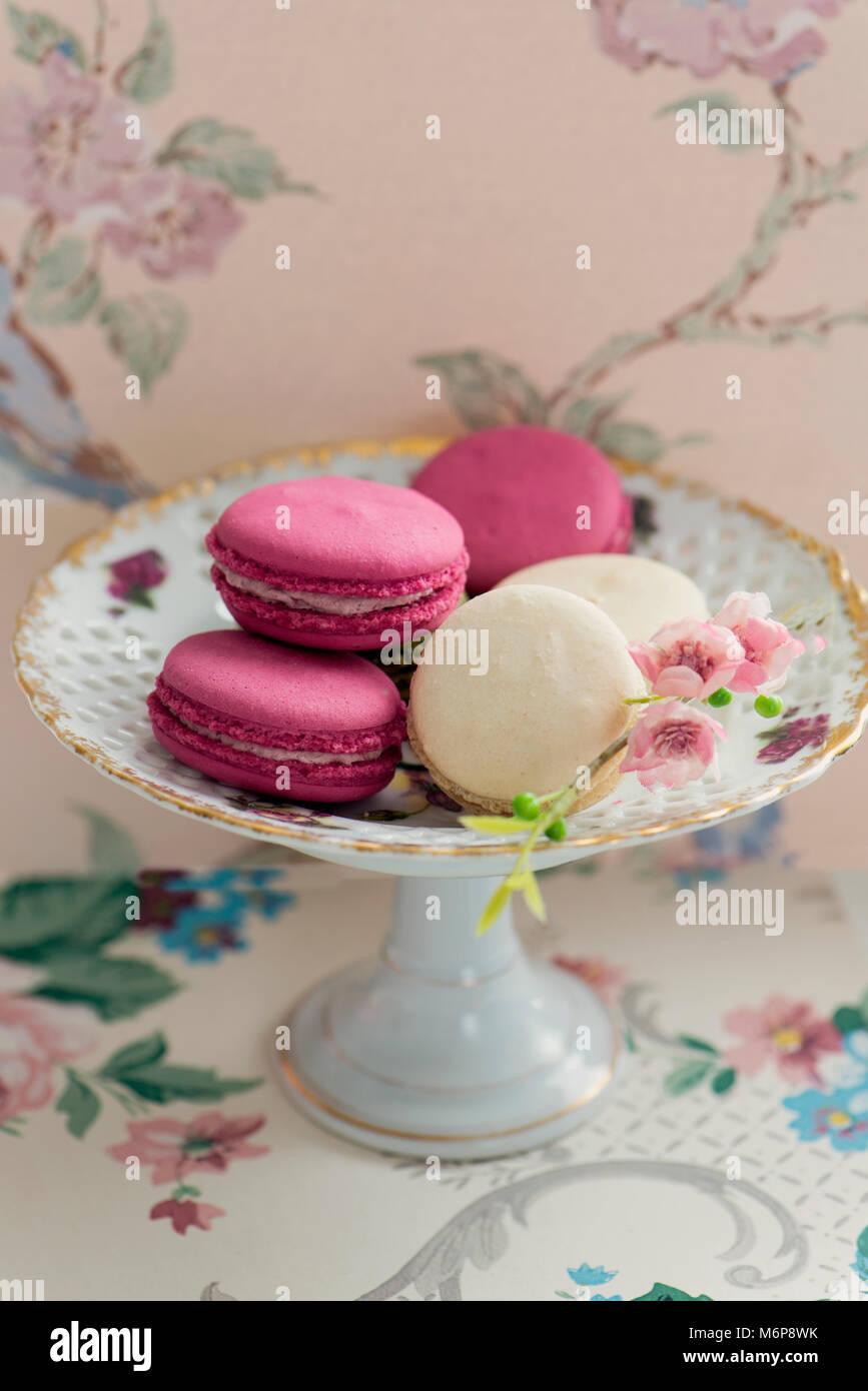 Pastellfarben Makronen auf einem Teller mit floralem Hintergrund. Stockbild