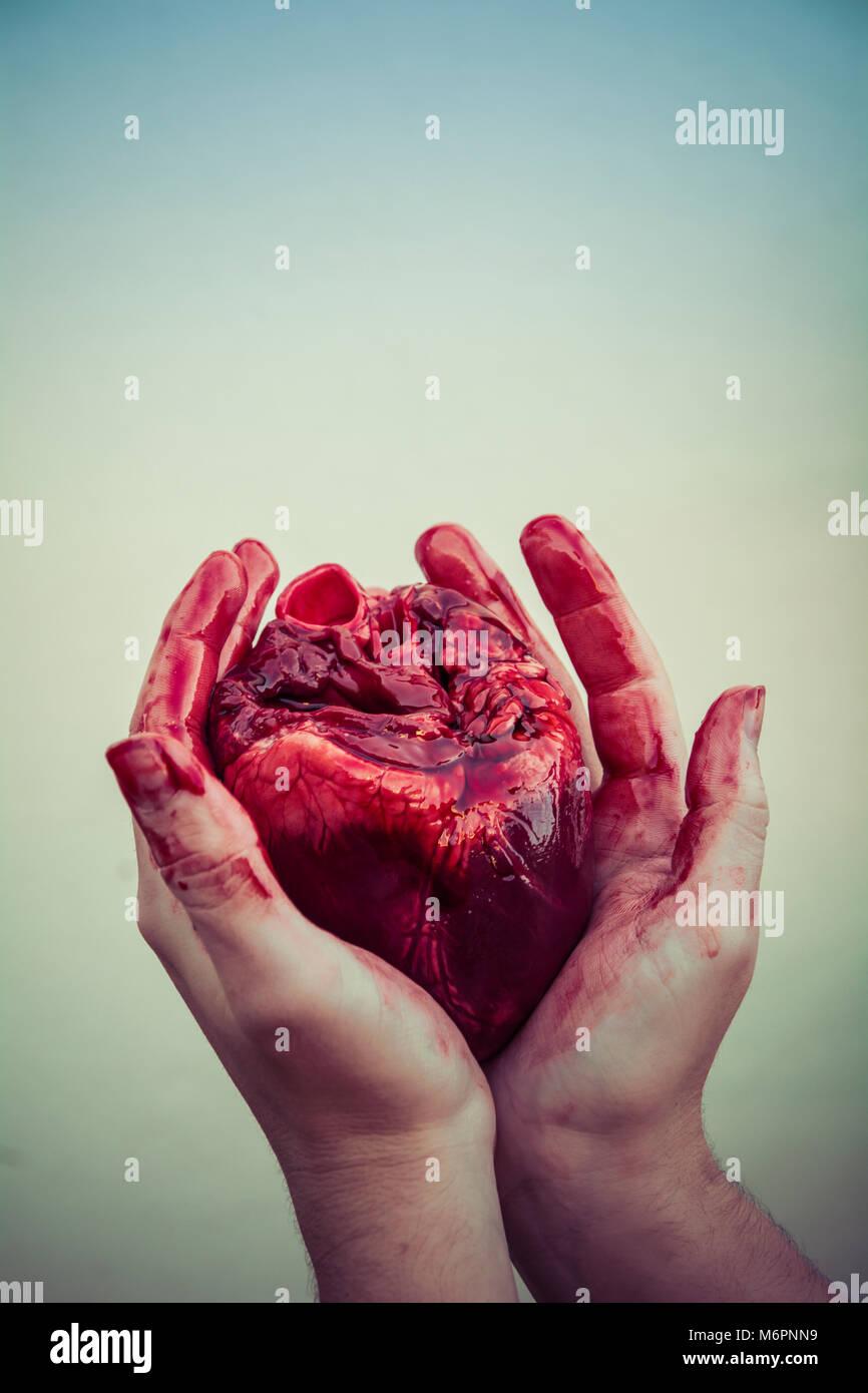 Ein echtes Herz in der hohlen Hand halten Stockbild