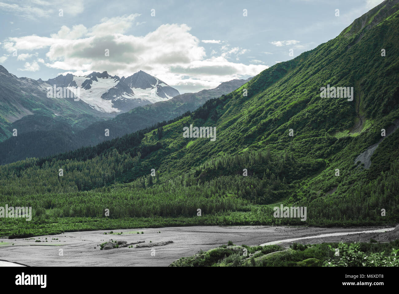 Kenai Fjords Nationalpark Stockbild