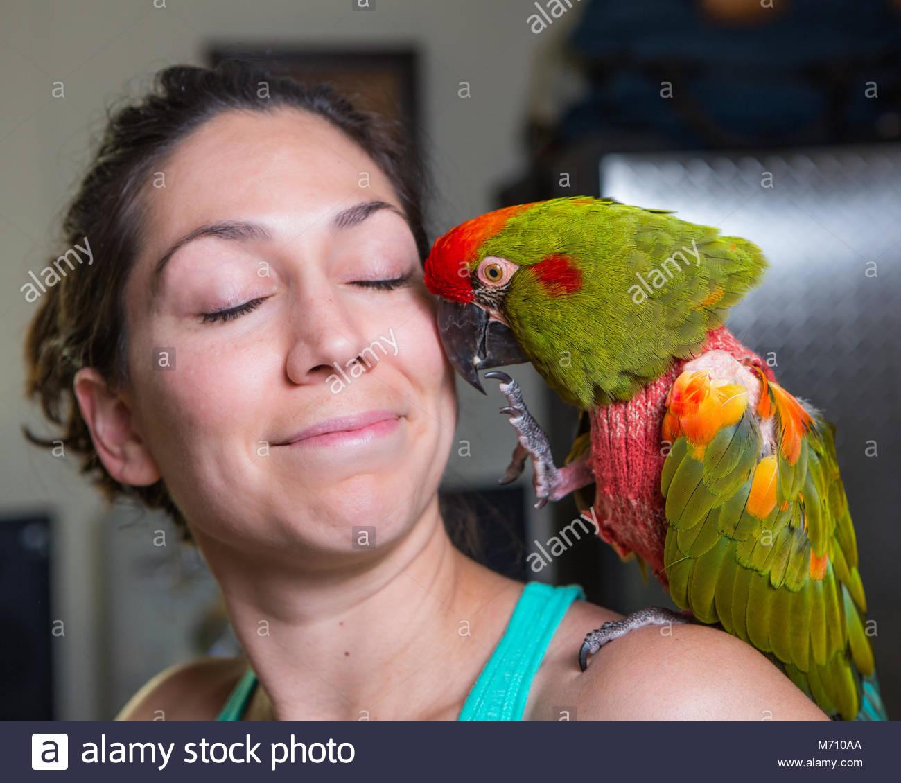 woman macaw stockfotos woman macaw bilder alamy. Black Bedroom Furniture Sets. Home Design Ideas