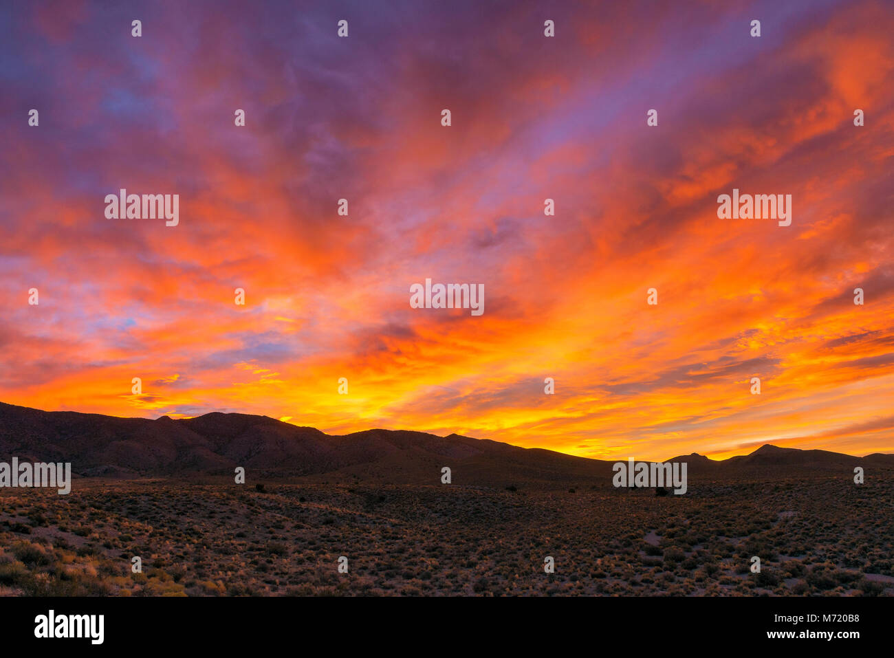 Sunrise, Coyote Gipfel, Timpahute, Nevada Stockbild