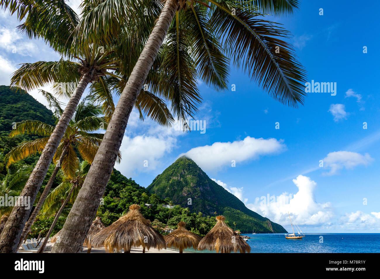 Gros Piton, mit Palmen und strohgedeckten Sonnenschirmen, Sugar Beach, St. Lucia, Windward Islands, West Indies Stockbild