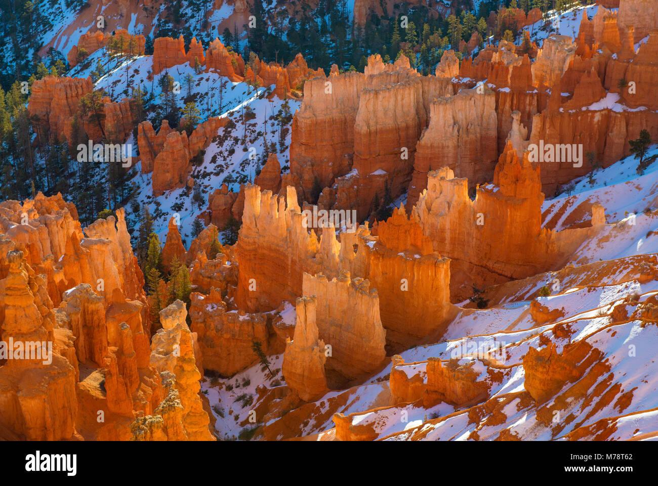 Sunrise, Wall Street, Bryce Canyon National Park, Utah Stockbild