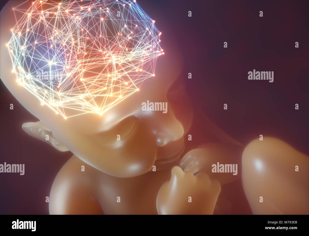 3D-Darstellung. Bild eines Babys im Mutterleib. Stockbild