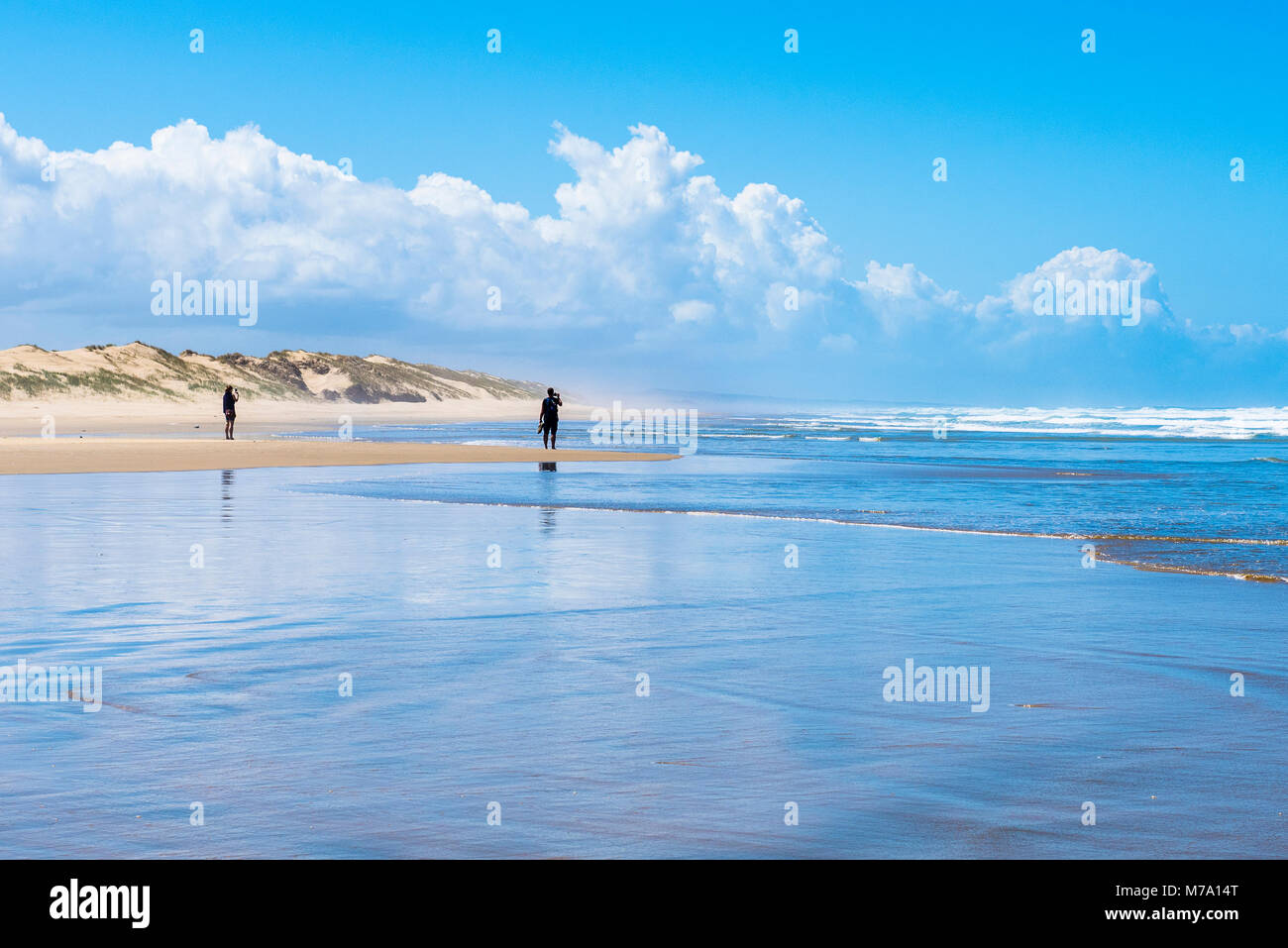 Wanderer am Ninety Mile Beach, North Island, Neuseeland Stockbild