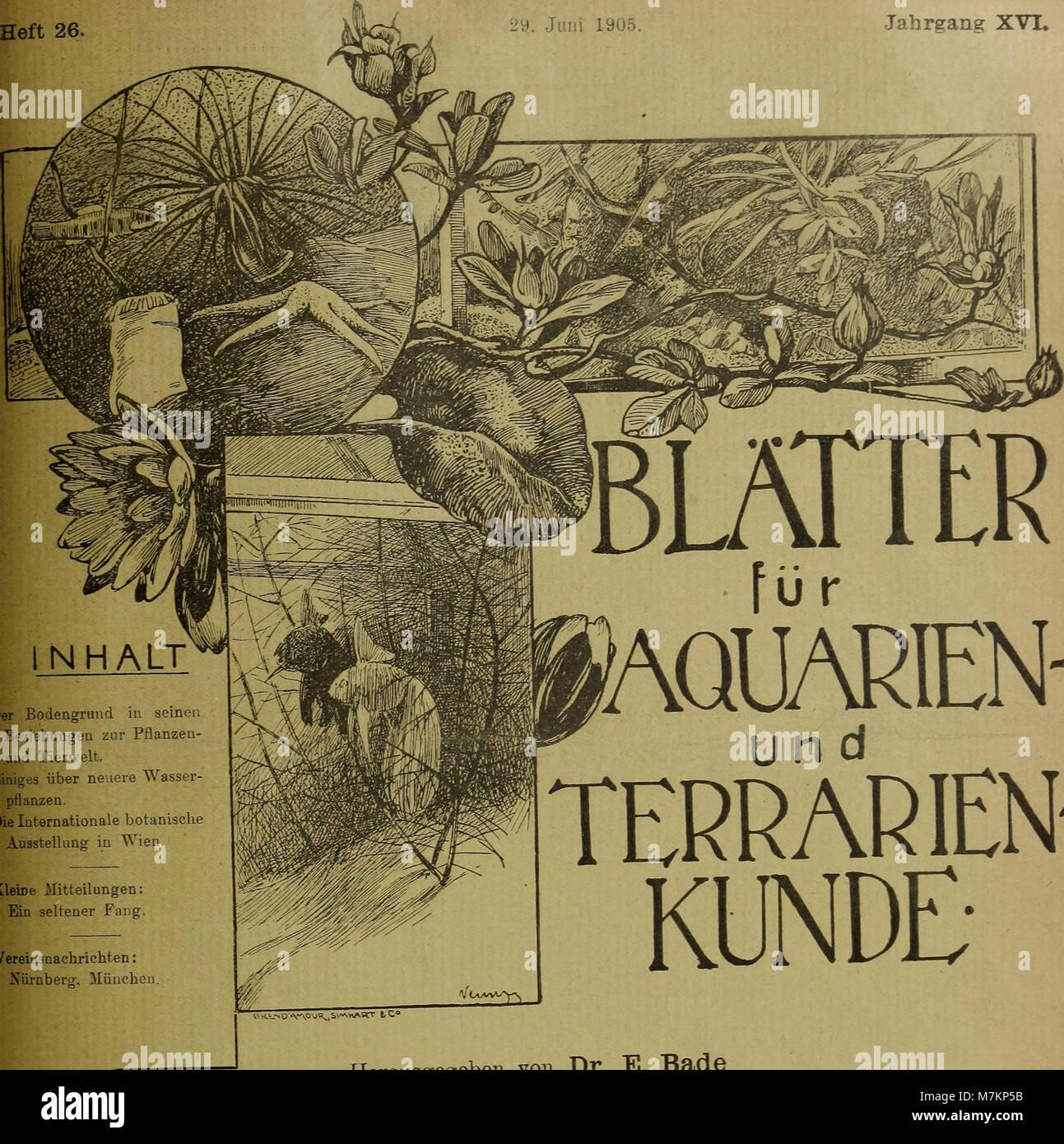 Blätter für Aquarien- und Terrarien-Kunde (1905) (20200932559) Stockfoto