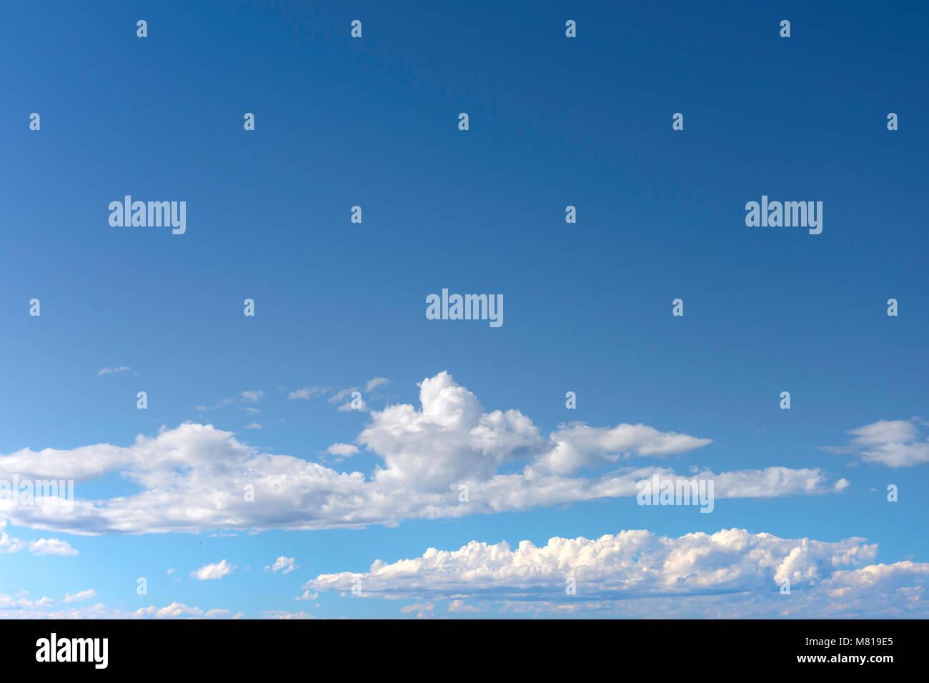 Cumulus Wolken und blauer Himmel, Christchurch, Canterbury, Neuseeland Stockbild