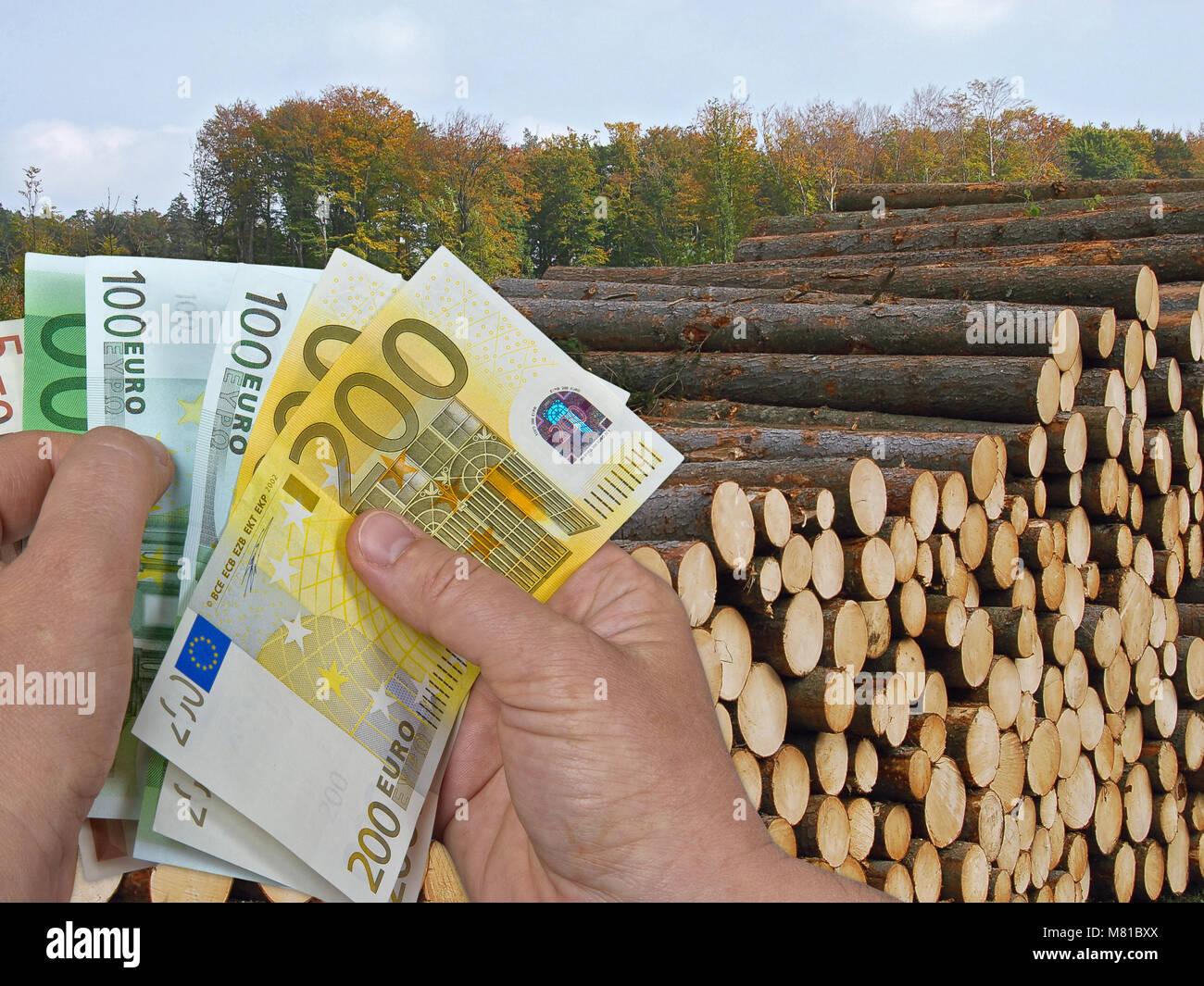 Kiefer Holzpreis Stockfoto Bild 177052258 Alamy